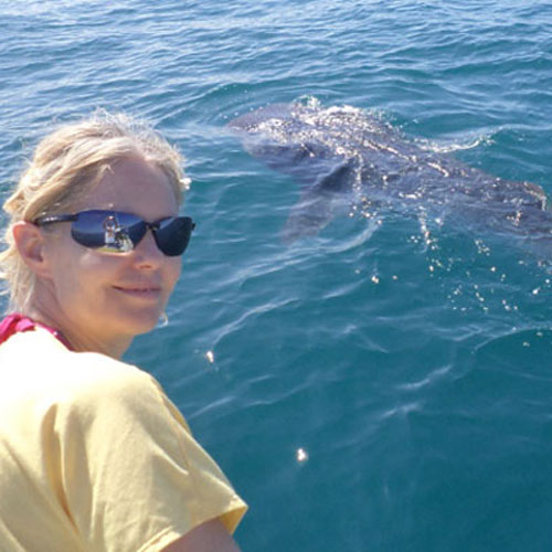 Kimi's first Whale Shark